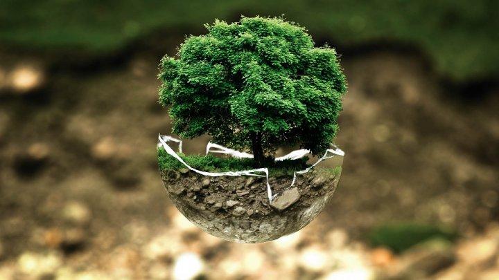 Bio et environnement