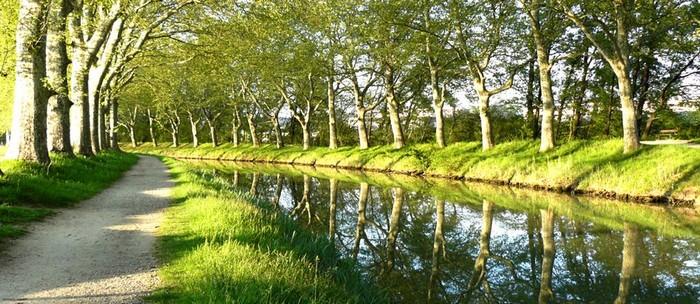 le canal du midi en région Occitanie