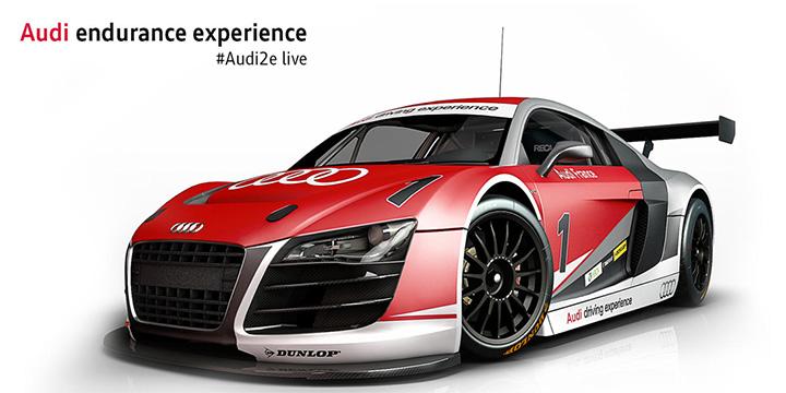Audi endurance