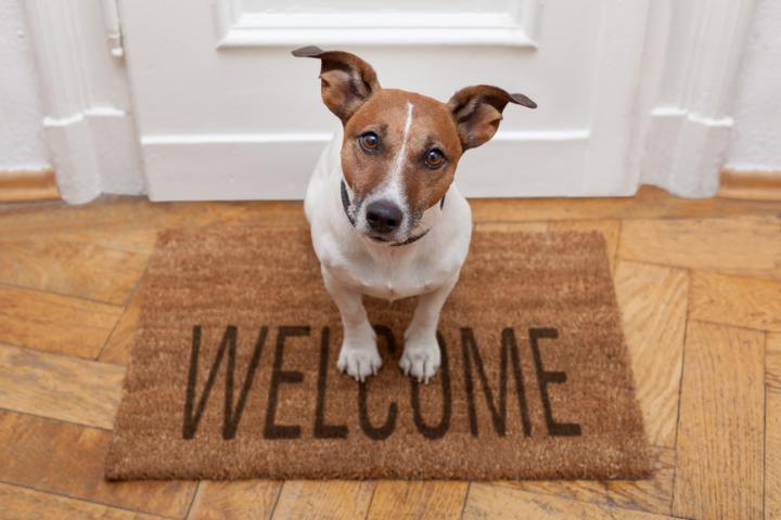 Bienvenu à la maison !